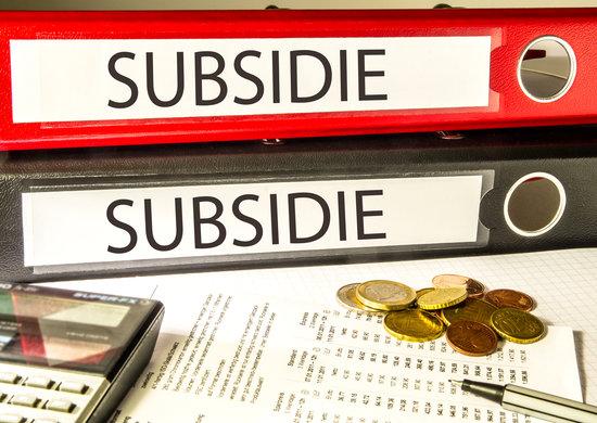 adobestock-88957161-subsidie.jpeg